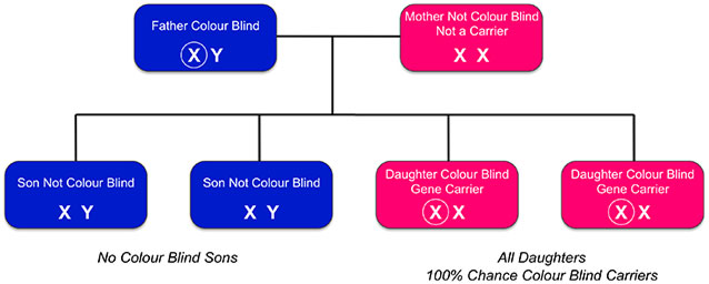 Inherited Colour Vision Deficiency